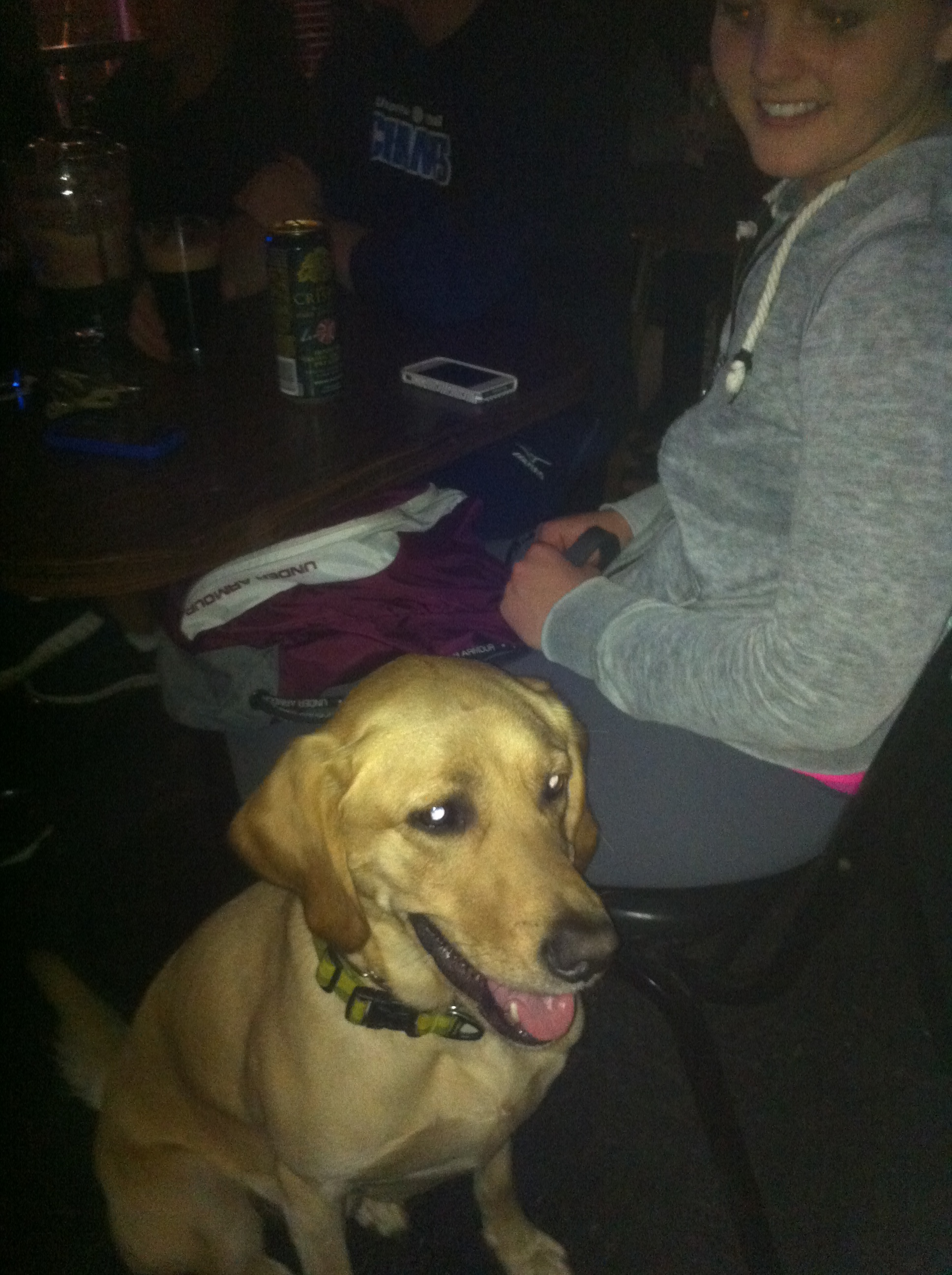 Brody the Golden Lab at Linda's Tavern on Capitol Hill